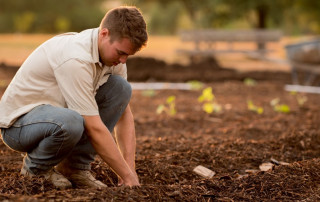 IIs it time for a new food system - man planting crops
