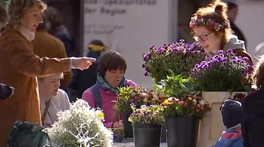 new organic cities member Bremen